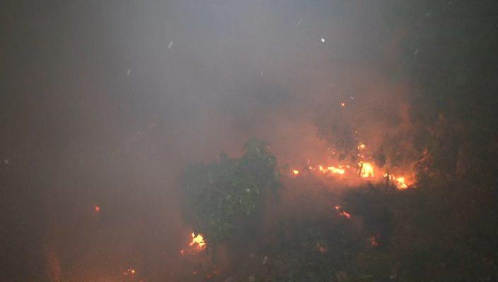 fogo (1)